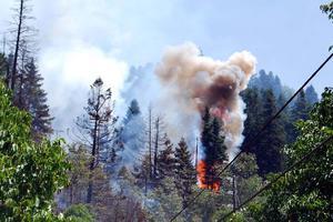 Η φωτιά πέρασε στο Καπανδρίτι