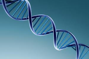 Έφτιαξαν... DNA του σωλήνα