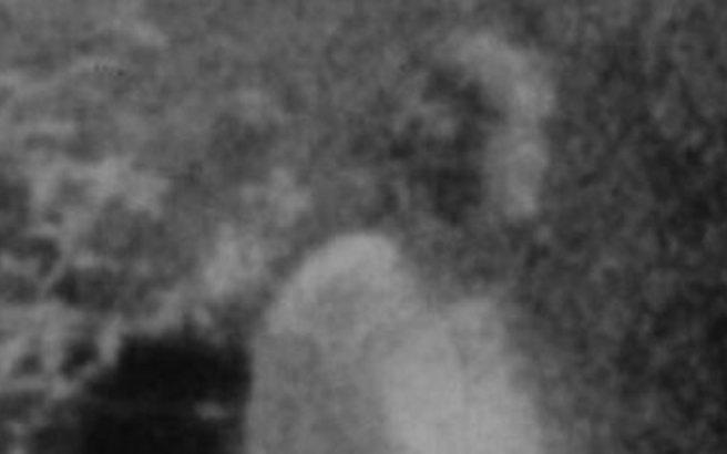 Το φάντασμα της Χασιάς προκαλεί αναστάτωση