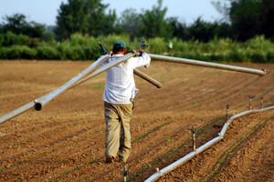 Πιο ευάλωτοι στον καρκίνο του δέρματος οι γεωργοί
