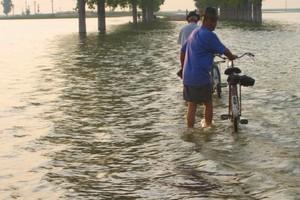 Στο έλεος των πλημμυρών παραμένουν επαρχίες της Ρουμανίας