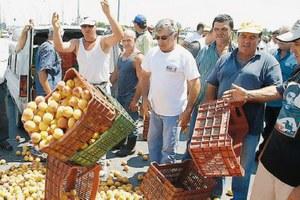 Σήμερα καθορίζουν τη στάση τους οι ροδακινοπαραγωγοί