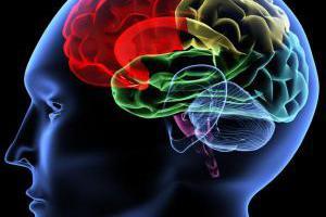 Ένα βήμα πριν την πρόβλεψη της σχιζοφρένειας