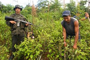 Ναρκω-πόλεμος Κολομβίας-Βενεζουέλας