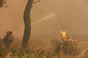 Στις φλόγες και ο δήμος Μακρυνείας στο Μεσολλόγι