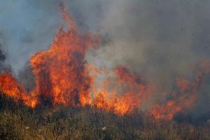 Άμεση η κινητοποίηση για τη φωτιά στο Λαύριο