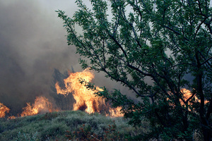 Σε ύφεση η φωτιά στη Λευκάδα