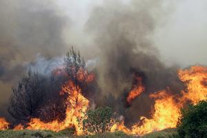 Μεγάλη φωτιά με δύο μέτωπα στη δυτική Αχαΐα