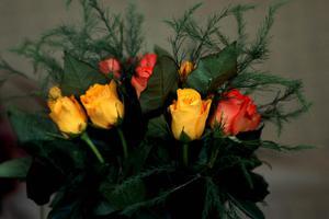 Τα λουλούδια στη... ληστεία από μένα!