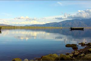 Κυνηγούν πάπιες στη λίμνη Κερκίνη