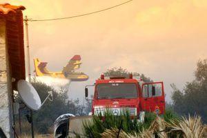 Δεν έχε τεθεί ακόμη υπό πλήρη έλεγχο η φωτιά στην Αργολίδα
