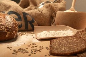 Μειωμένη η συγκομιδή δημητριακών στη Γερμανία