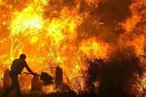 Μάχη με τις φλόγες στην Πορτογαλία