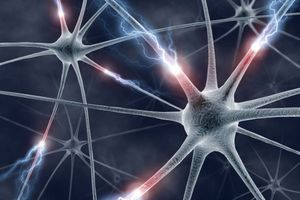 Πώς αντιδρά ο εγκέφαλος κατά τη διάρκεια της εφηβείας