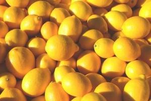 Ανήλικος έκλεψε και πούλησε πάνω από δέκα τόνους λεμόνια