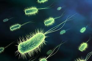 Εμφανίστηκαν νέα ανθεκτικά βακτήρια