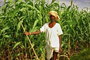 Τα βιοκαύσιμα απειλούν τα παιδιά της Αφρικής
