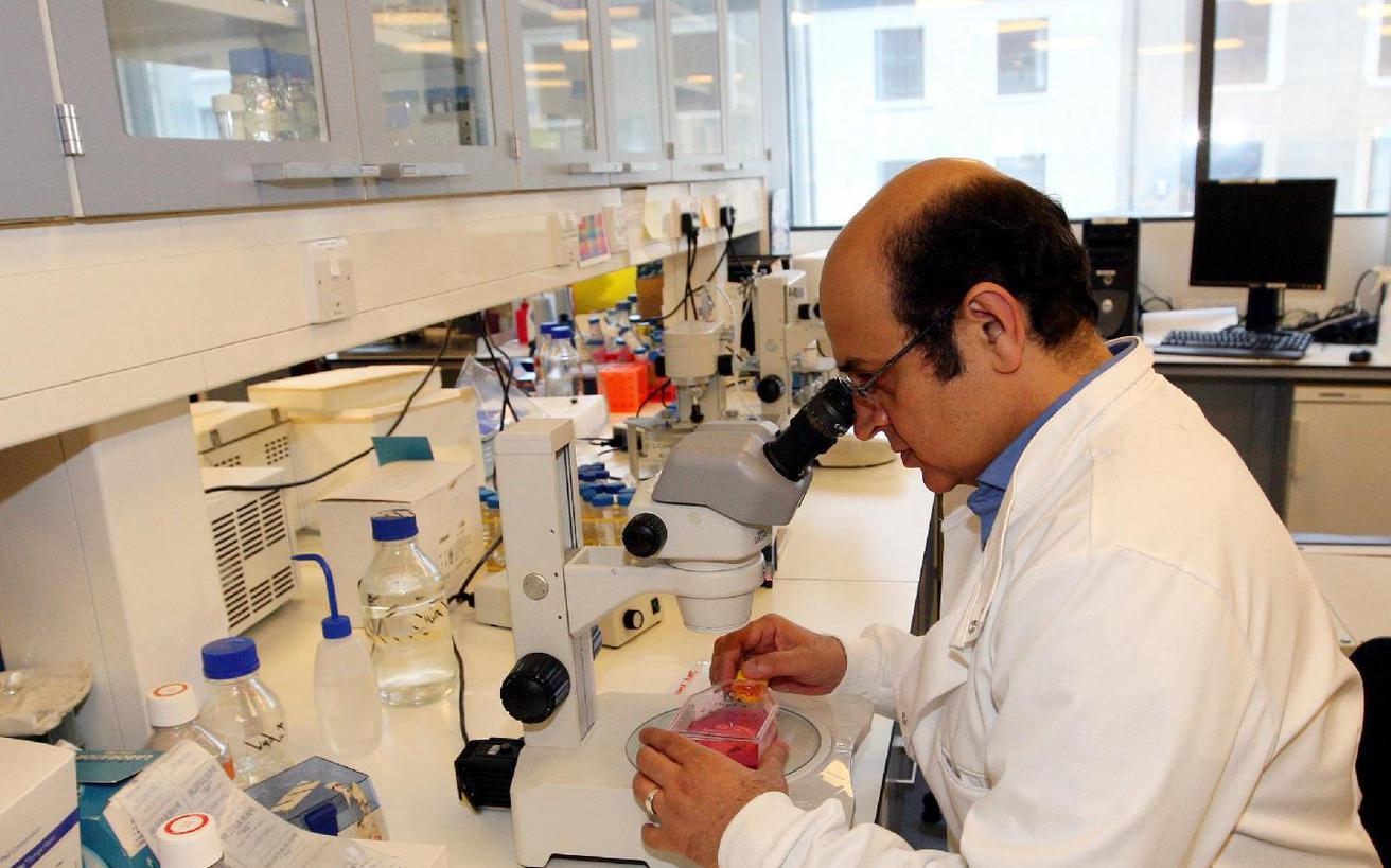 Κινέζοι επιστήμονες βρήκαν καλύτερη λύση για τις περιπτώσεις απόρριψης μοσχεύματος