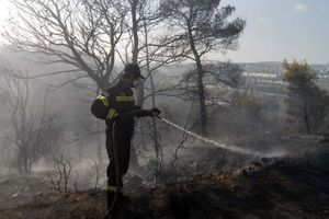 Υπό μερικό έλεγχο η φωτιά στη Φιλιππιάδα