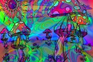 Το LSD μπορεί να βοηθήσει τους αλκοολικούς να κόψουν το ποτό