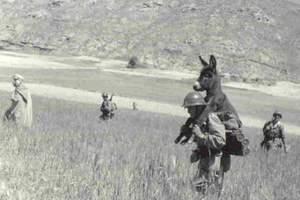 Αστείες εικόνες από τον Β' Παγκόσμιο Πόλεμο - 2o μέρος
