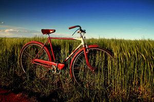 Ποδηλατάδα στο Μαλιακό
