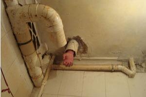 Σφήνωσε στη λεκάνη της τουαλέτας για πέντε ώρες