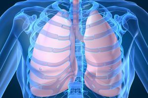 Η ιβουπροφαίνη βοηθά στην υγεία των πνευμόνων