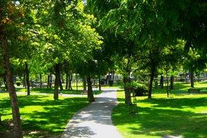 Επιχείρηση «καθαρά πάρκα»