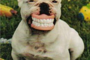 Πώς θα βγείτε φωτογραφία με το σωστό χαμόγελο