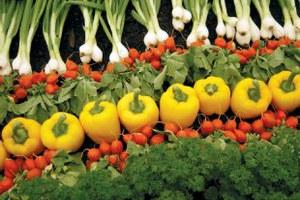 Τα βιολογικά προϊόντα κερδίζουν έδαφος