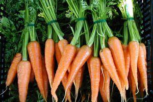 Ένα καρότο την ημέρα…