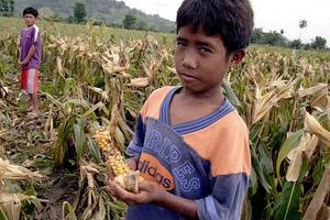 Η κλιματική αλλαγή θα φέρει την παγκόσμια πείνα