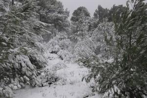 Έκτακτο δελτίο επιδείνωσης καιρού για την επέλαση του χιονιά