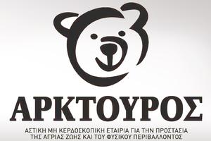 Βγάλτε τα αρκουδάκια σας από την ντουλάπα και φωτογραφίστε τα!