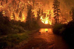 Ξεμπλόκαρε η χρηματοδότηση για τις πληγείσες περιοχές από τις πυρκαγιές του 2007