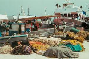 Ο Συνήγορος του Πολίτη «έσωσε» τους αλιείς της Χαλκιδικής
