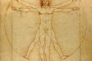 Η πολυπλοκότητα του ανθρώπινου σώματος