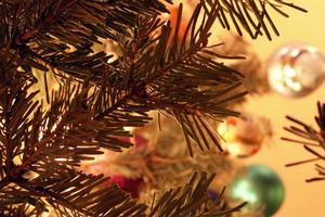 Πού θα κάνουν Χριστούγεννα οι άνθρωποι της σόουμπιζ;
