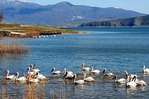 Ο «Θησαυρός των λιμνών μας» αποκαλύπτεται