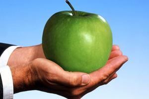 Τοξικές τροφές στην καθημερινότητά μας