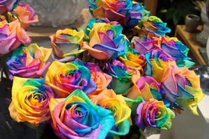 Ο συμβολισμός των τριαντάφυλλων
