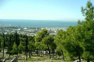 «Ωρολογιακή βόμβα» οι δασικές εκτάσεις της Β. Ελλάδας