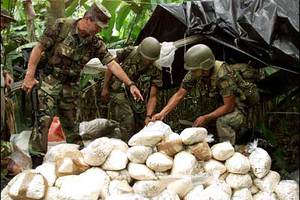 Αύξηση στις σφαγές κατά 40% στην Κολομβία