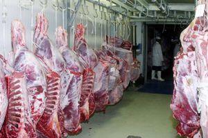 Δεν τα βρίσκουν στις τιμές του κρέατος έμποροι και κτηνοτρόφοι
