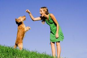Όταν το σκυλί συμπεριφέρεται άσχημα