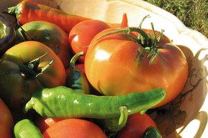 Είναι πιο θρεπτικά τα βιολογικά τρόφιμα;