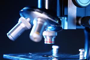 Τεχνητό φύλλο μιμείται τη διαδικασία φωτοσύνθεσης