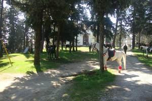 Μικρά χωριά στα Τρίκαλα