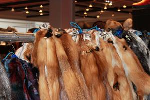 Ένα βήμα πριν την απαγόρευση της γούνας το Λος Άντζελες